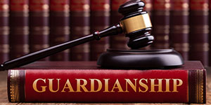 Guardianships, Conservatorships and Vulnerable Adult Protection